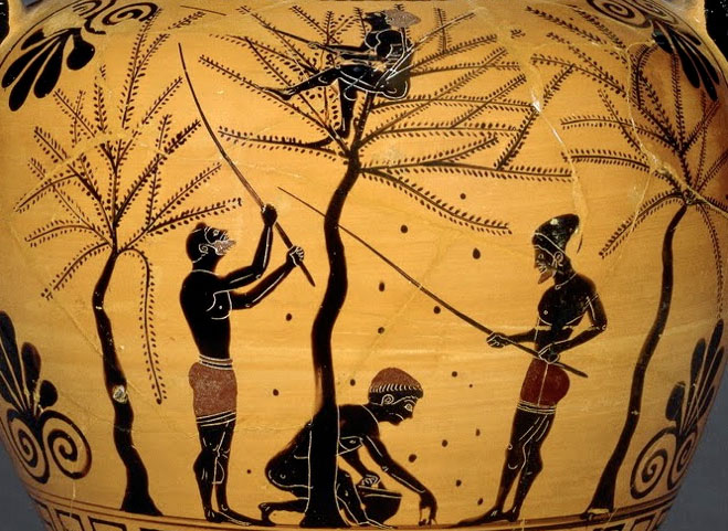 Amphora_ancient_harvest